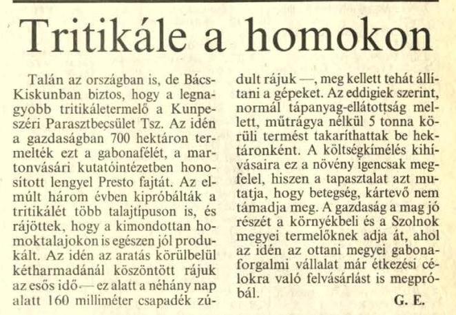 Tritikále a homokon / G. E. In: Petőfi népe. - 46. évf. 181. sz. (1991. aug. 3.), p. 3.