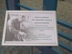 Mészöly Gyula kiállítás plakátja