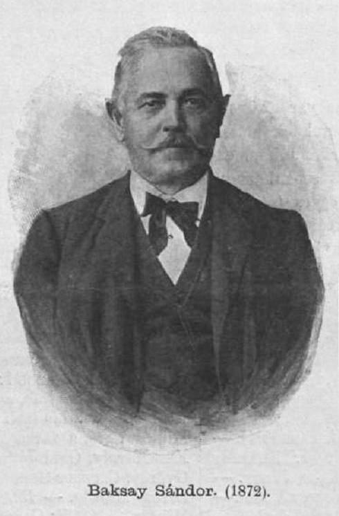 Baksay Sándor (1832-1915) író, műfordító